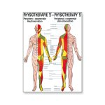Poster Physiotherapie V