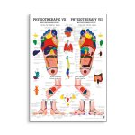 Poster Physiotherapie VII